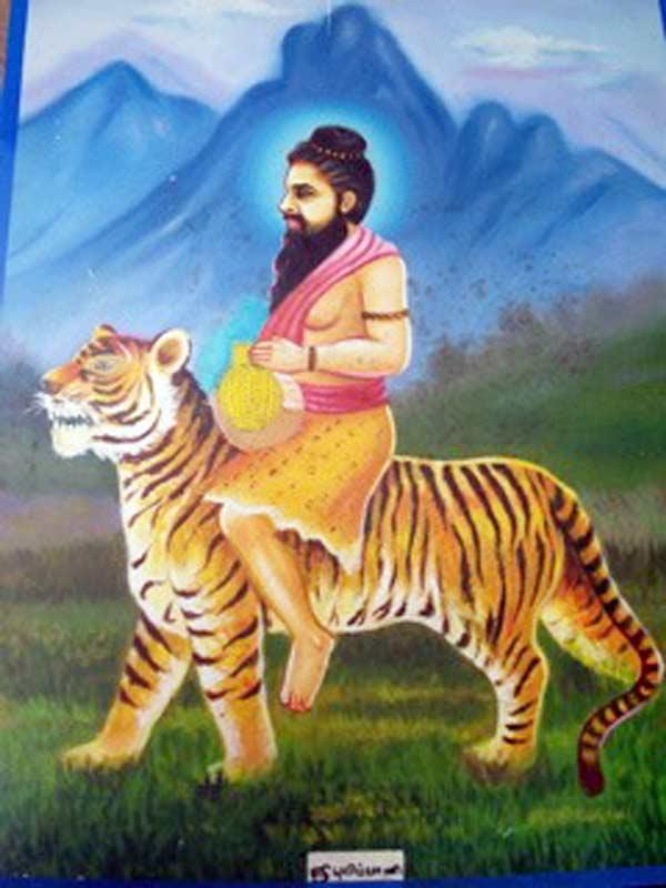 Pulippani Siddha